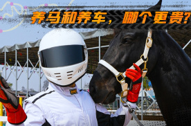 究竟买马和养车,哪个更贵呢?