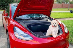 如果没有做好买车准备,就不要试驾特斯拉