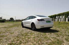 明知降价还对Model 3趋之若鹜,为什么?一个字,香!