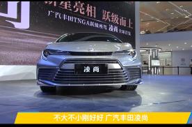 【2020广州车展】不大不小刚刚好 广汽丰田凌尚