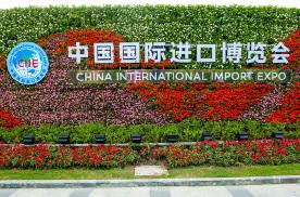 2020上海进博会品牌体育辐轮王全球第一自行车展后市场份额激
