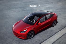 2020新能源销量出炉:能把Model 3拉下马的会是宏光?