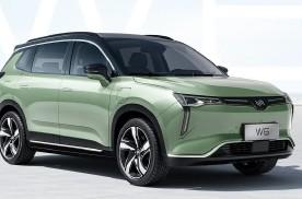 国内首款无人驾驶量产车型——威马W6正式上市,16.98万元