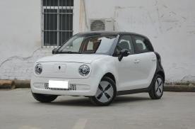 欧拉R1将增新车型,造型依旧可爱/动力提升明显