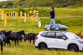 路上的内蒙EP03 锡林郭勒大草原上的车马竞逐