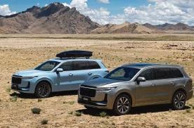 理想汽车首次实现季度盈利,2020全年净亏损缩至1.52亿元