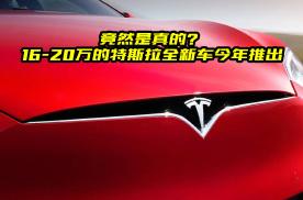 好消息:特斯拉将量产紧凑型轿车,预计价格16-20万元