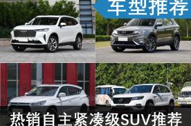 自主紧凑型SUV推荐,这四款销量高价格实惠,懂不懂车都能开