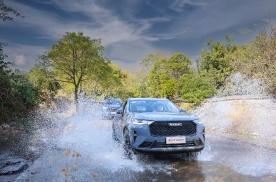 智能化引领品牌向上!长城汽车2月销售8.9万辆 同比大涨78