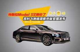 特斯拉Model 3又降价了,宾利飞驰插混傲世版官图发布!