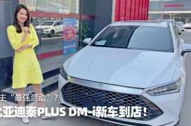 """自主""""最强混动""""?比亚迪秦PLUS DM-i新车到店!"""