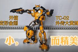 TC02大黄蜂,这么小这么贵值不值?
