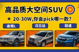 20-30万元的高品质大空间SUV,你会pick哪一款