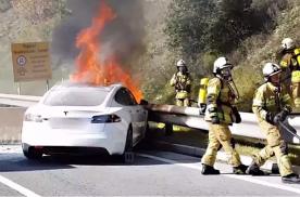 """安全的汉与""""割韭菜""""的Model 3,你选谁?"""
