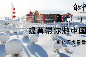 【提莫带你游中国】南方人从未见过的雾凇美景,东北看雪安排上!