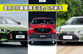 盘点8月最值得关注的上市新车,款款都是热门车,准备买车的看看