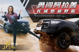小野怡情|沙漠体验长城炮的越野性能,利器官方改装版越野炮