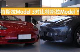 选择困难症看过来 特斯拉Model 3和Model Y怎么选