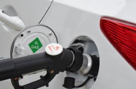 开展燃料电池汽车示范应用,猴子掰棒子还是要面面俱到?