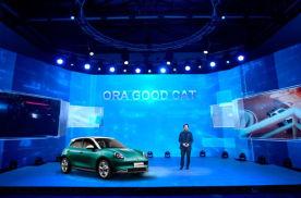 聚焦全球化、新能源、智能化 长城汽车总裁王凤英为中国汽车建言