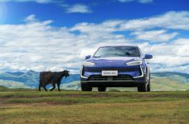 """赛力斯新能源汽车:只有宏大的市场布局才能做到""""一花独放"""""""