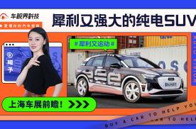 上海车展前瞻:犀利又强大的纯电SUV, MEB平台新生命