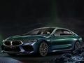 宝马M8四门轿跑车极光版上市 售256.8万